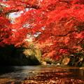 476 里川の紅葉