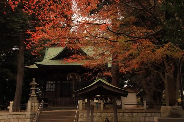 Photos: 661 油縄子の八幡神社
