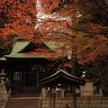 661 油縄子の八幡神社