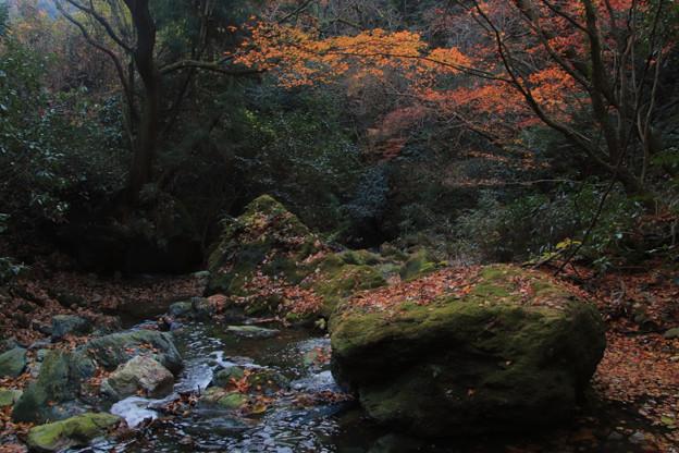 Photos: 368 陰作川