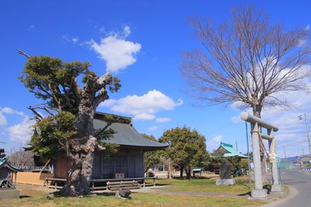 998 神田町 鹿島神社
