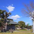 Photos: 998 神田町 鹿島神社
