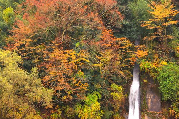 553 里川の直瀑