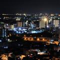 かみね公園 展望台からの夜景 日立市