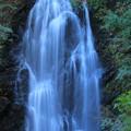 Photos: 490 玉簾の滝 日立市