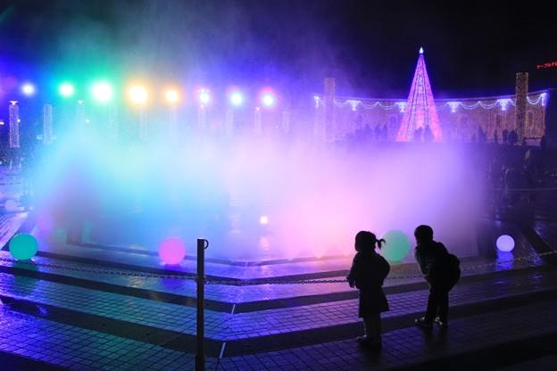 Photos: ヒタチスターライトイルミネーション 2019