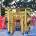 Photos: ほしいも神社