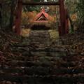 Photos: 576 高山神社