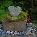 Photos: 424 ハートの石 御岩神社