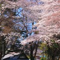 82 厳島神社 金沢弁天池公園