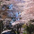 Photos: 855 厳島神社 金沢弁天池公園