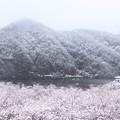 Photos: 142 十王ダム湖