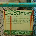 Photos: 067 かみね動物園文字