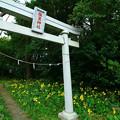 Photos: 269 塩釜神社