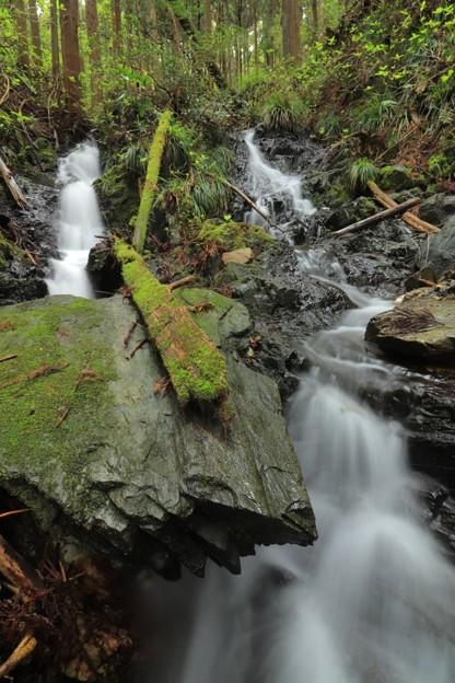 311 北川上流の夫婦滝
