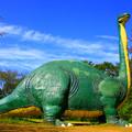 水戸市森林公園 恐竜広場