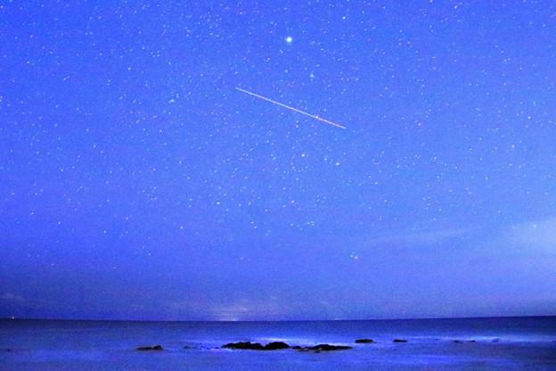 Photos: 697 七夕磯 会瀬海岸