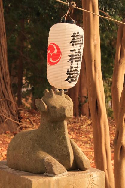 752 大久保鹿島神社の狛鹿