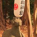 752 大久保鹿嶋神社の狛鹿
