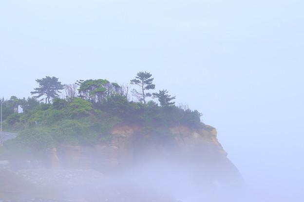Photos: 279 飽田の村 相田浜