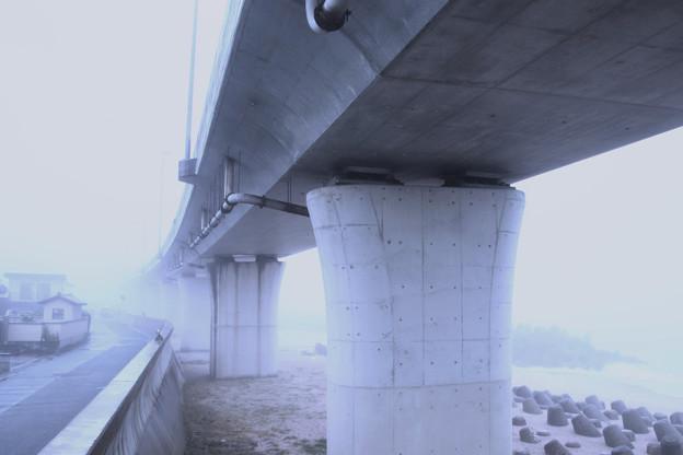 Photos: 318 清水浜 日立市