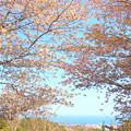 Photos: 290 田尻富士からの眺望