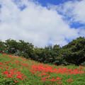 Photos: 191 友部城跡公園