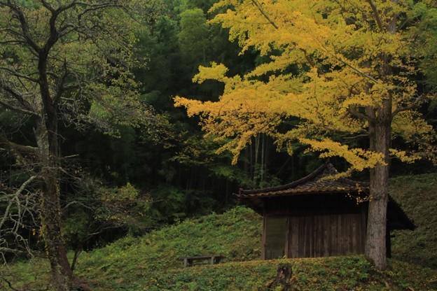 Photos: 上深萩の十九夜観音 常陸太田
