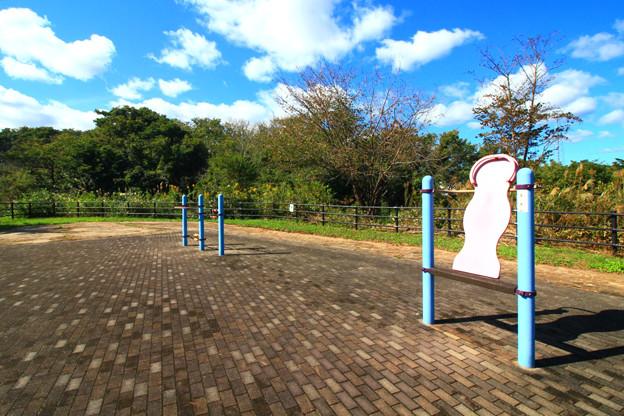 Photos: 294 海の健康広場 東滑川ヒカリモ公園