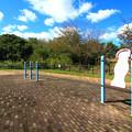 306 海の健康広場 東滑川ヒカリモ公園