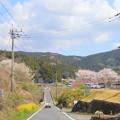 Photos: 565 上淵大橋(わぶちおおはし) 中里