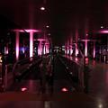 Photos: 冬のさくらまつり 2020 日立駅ライトアップ