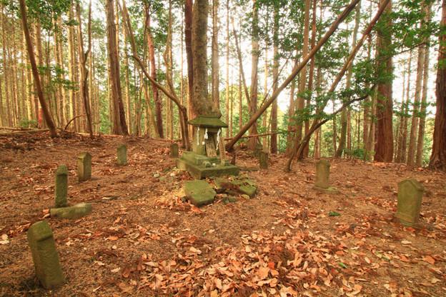 Photos: 547 富士神社 日立市 助川町の富士山
