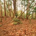 545 富士神社 日立市 助川町の富士山