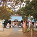 Photos: 797 下孫鹿嶋神社