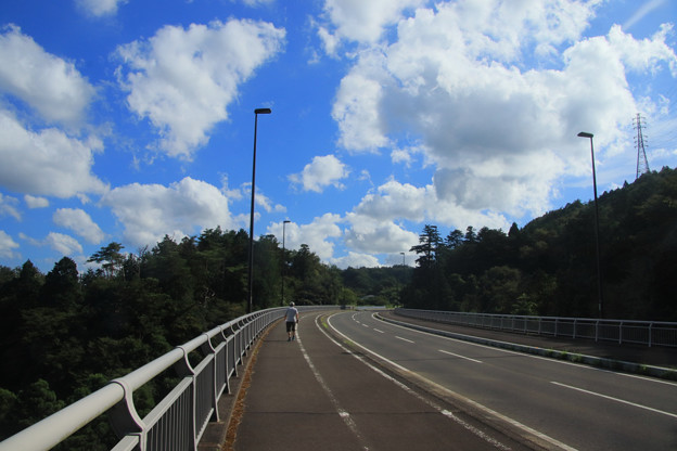 846 年金道路(山側道路)