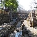 Photos: 王子 音無川親水公園