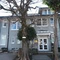 Photos: 元麻布「西町インターナショナルスクール」