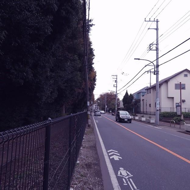 多磨全生園と周辺の住宅街