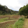 Photos: 奈良ばい谷戸