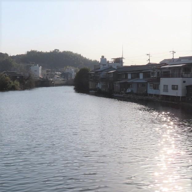 ドラム缶橋からの水辺の風景