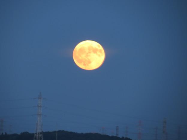 低い位置から満月が!