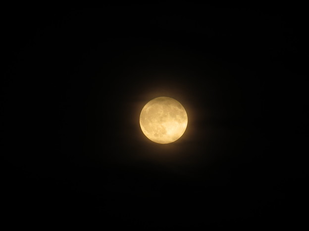 朧の満月♪