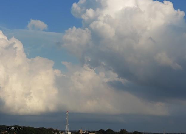 写真: 夕方の積乱雲