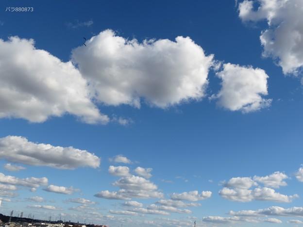 気持ち良く広がる青い空と白い雲!