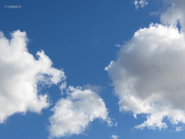 写真: 明るい空と白い雲!