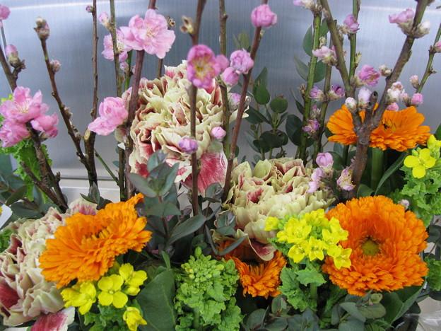 桃の節句の祝い花♪