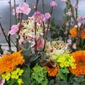 Photos: 桃の節句の祝い花♪