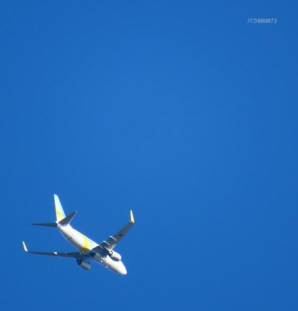 Photos: AIRDO