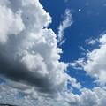 Photos: 雲の底♪